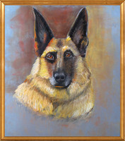 Hand-painted pastel pet portrait by Karen Sperling.